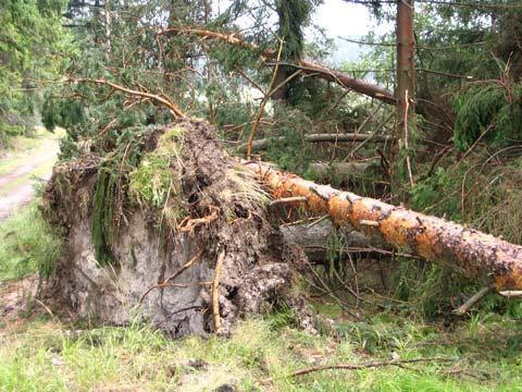 Následky ničivé bouřky