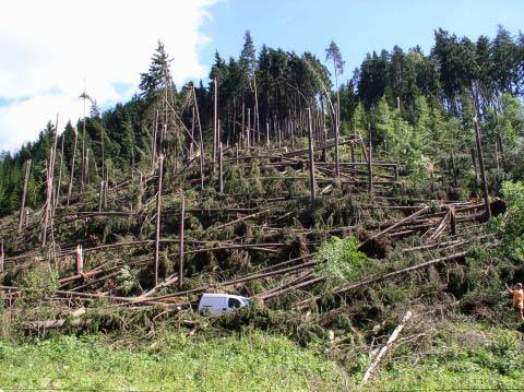 Následky ničivé bouřky - Oloví